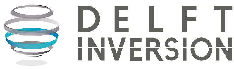 Delft Inversion Logo
